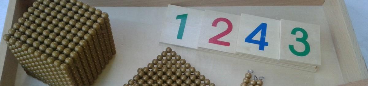 Montessori e Superdotação